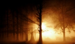 History and the Paranormal