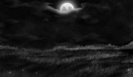 Field_in_the_night_by